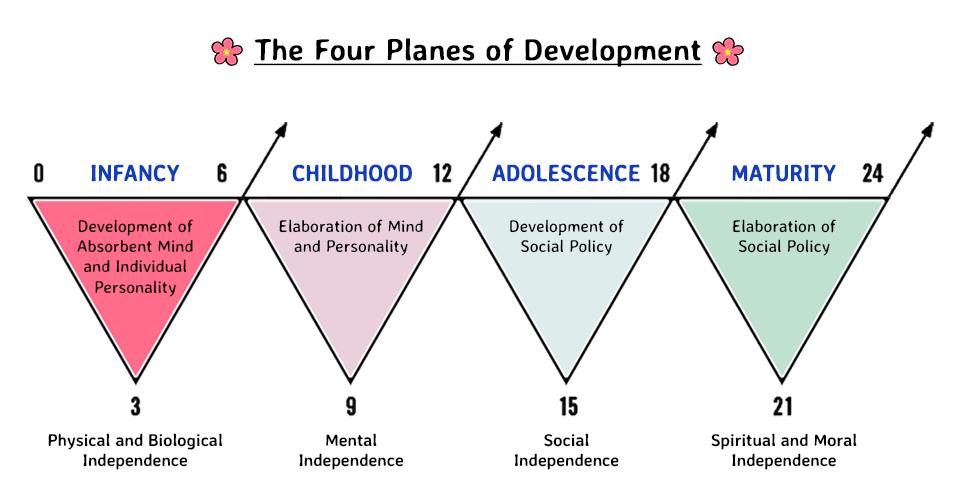 Maria Montessori's Four Planes of Development
