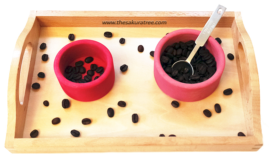 Transferring Activities - Coffee beans